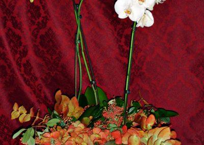 arreglos florales_0014